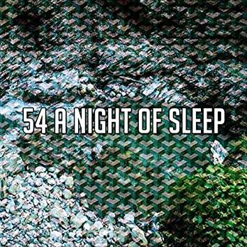 54 A Night of Sleep