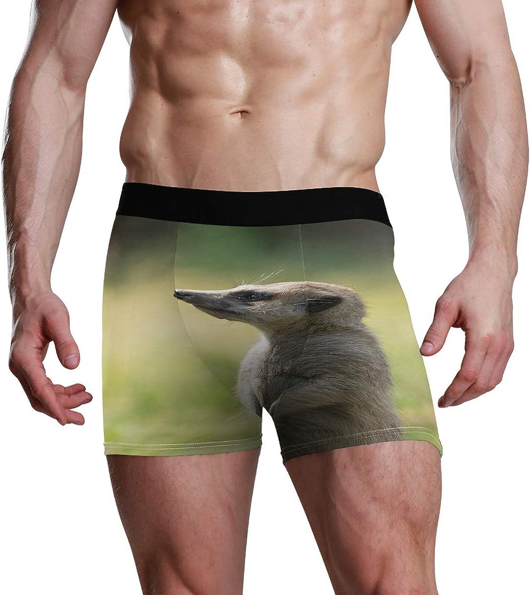 Men's Boxer Briefs Cute Animal Funny Meerkat Bikini Underwear Stretch Trunks Boys Underpants