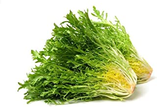 Lettuce Frisse Yellow Holland | Healthy & Nutritious | Crisp & Tender | Mild & Peppery | Premium Quality | Cleaned & Sanit...