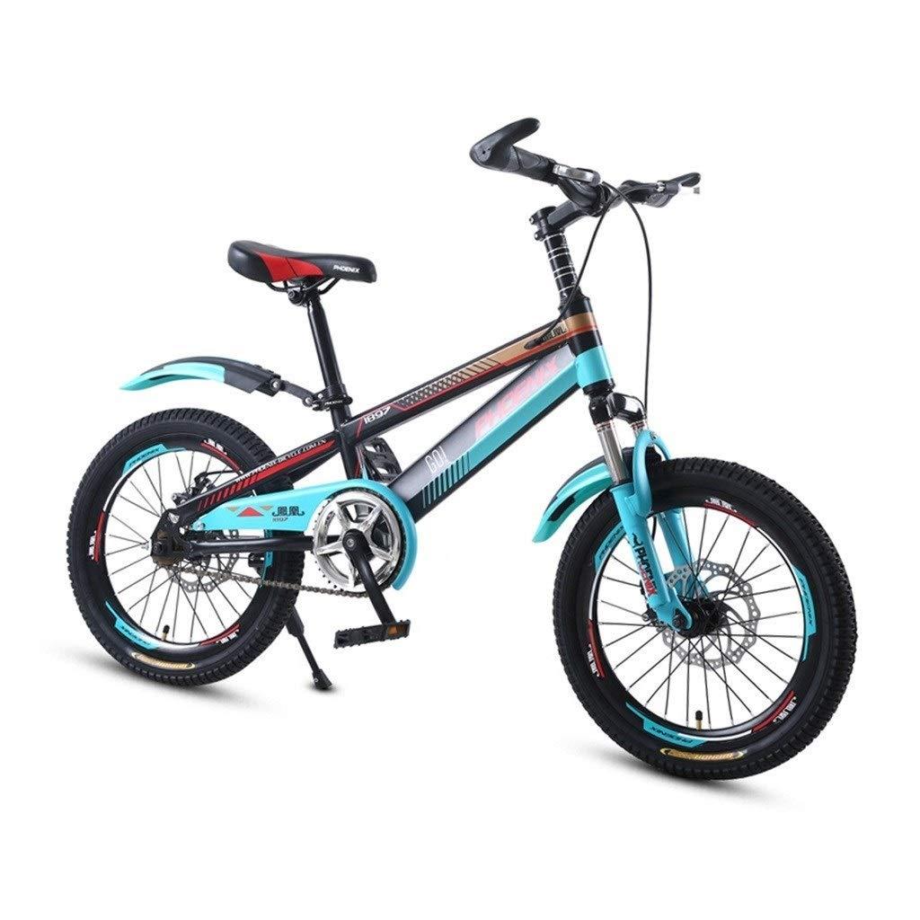 Bicicletas Triciclos Chico Y Chica del Pedal Viajes Montaña De Los ...