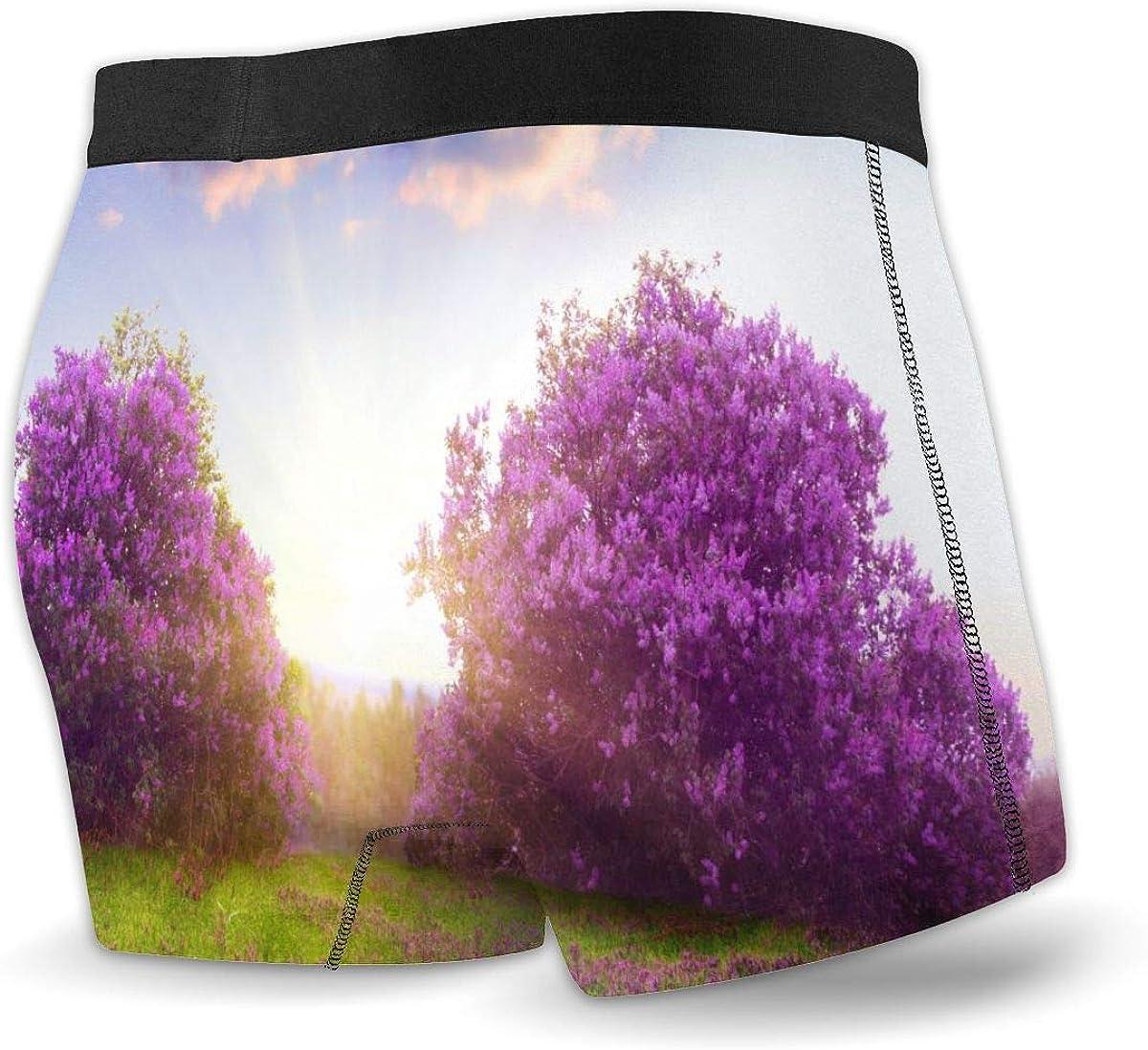 Mens Boxer Briefs Special Lilac Tree Boys Trunks Underwear Short Leg Breathable Man