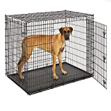 MidWest Homes for Pets XXL Giant Dog Crate | 54 Inch Long Ginormous Double Door Dog Crate Ideal for a Great Dane, Mastiff, St. Bernard & Other XXL Dog Breeds