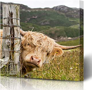 Ahawoso Canvas Prints Wall Art Printing 16x16 Brown Highland Scottish Highlander Scotland Animals Wildlife Cow Red Africa Agriculture Big Cattle Painting Artwork Home Living Room Office Bedroom Dorm