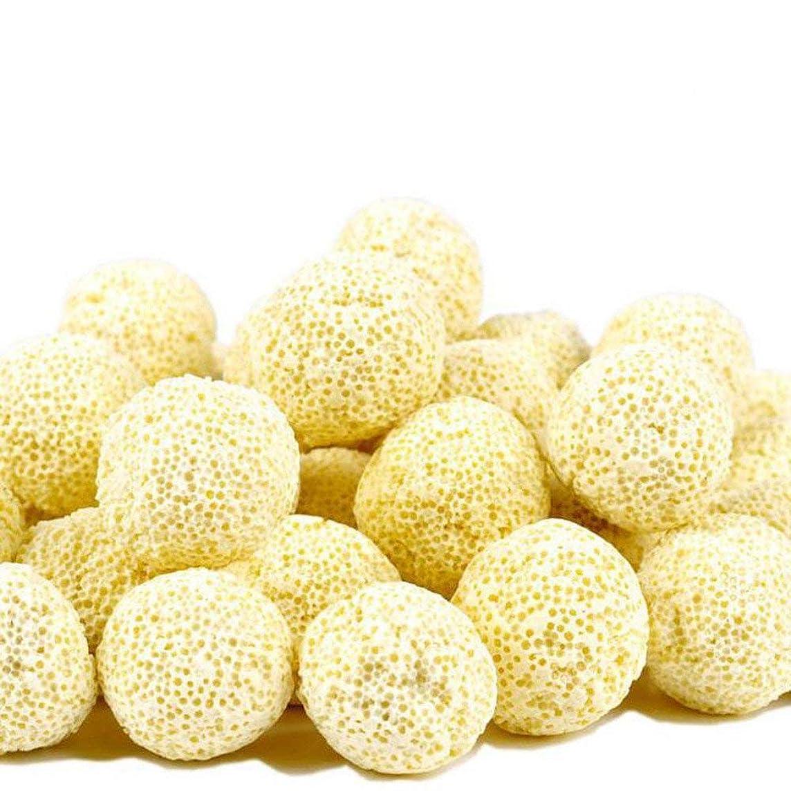OSAYES Aquarium Porous Ceramic Filter Media Net Bag Biological Ball Fish Tank (10PC)