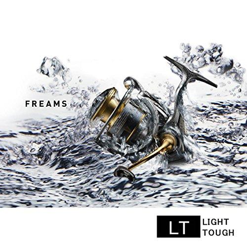 ダイワ『フリームス(LT2500S-DH)』