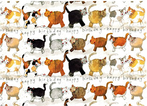 Alex Clark Art Cats Happy Birthday Gift Wrapping Paper 2 Sheets 19.5 in x 27.5 in