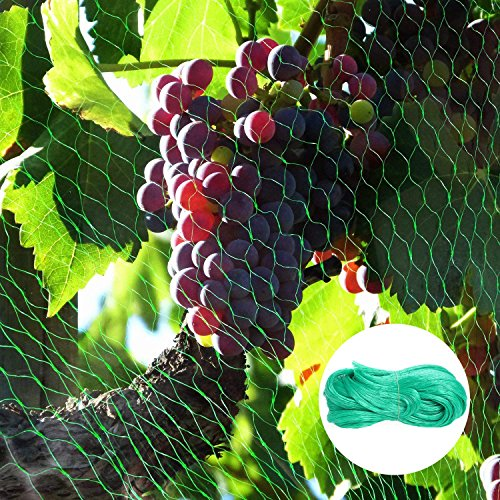 Rain Queen 4Mx10M Filet de Protection Jardin Anti-Oiseaux Nylon avec 100pcs Plastique Liens Maille Fruit Arbre Cerise Grillage Bassin Piscine Balcon (4m X 10m, Vert)