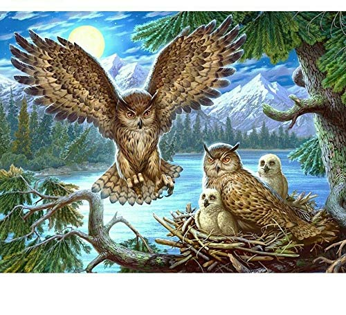 DIY 5d Diamond Painting Owl Nest Round Diamond Mosaic Home Decoration Embroidery Pattern Embroidery Handmade Year Gift