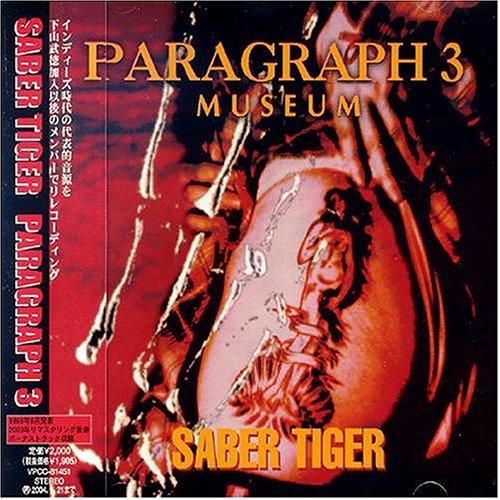 PARAGRAPH3