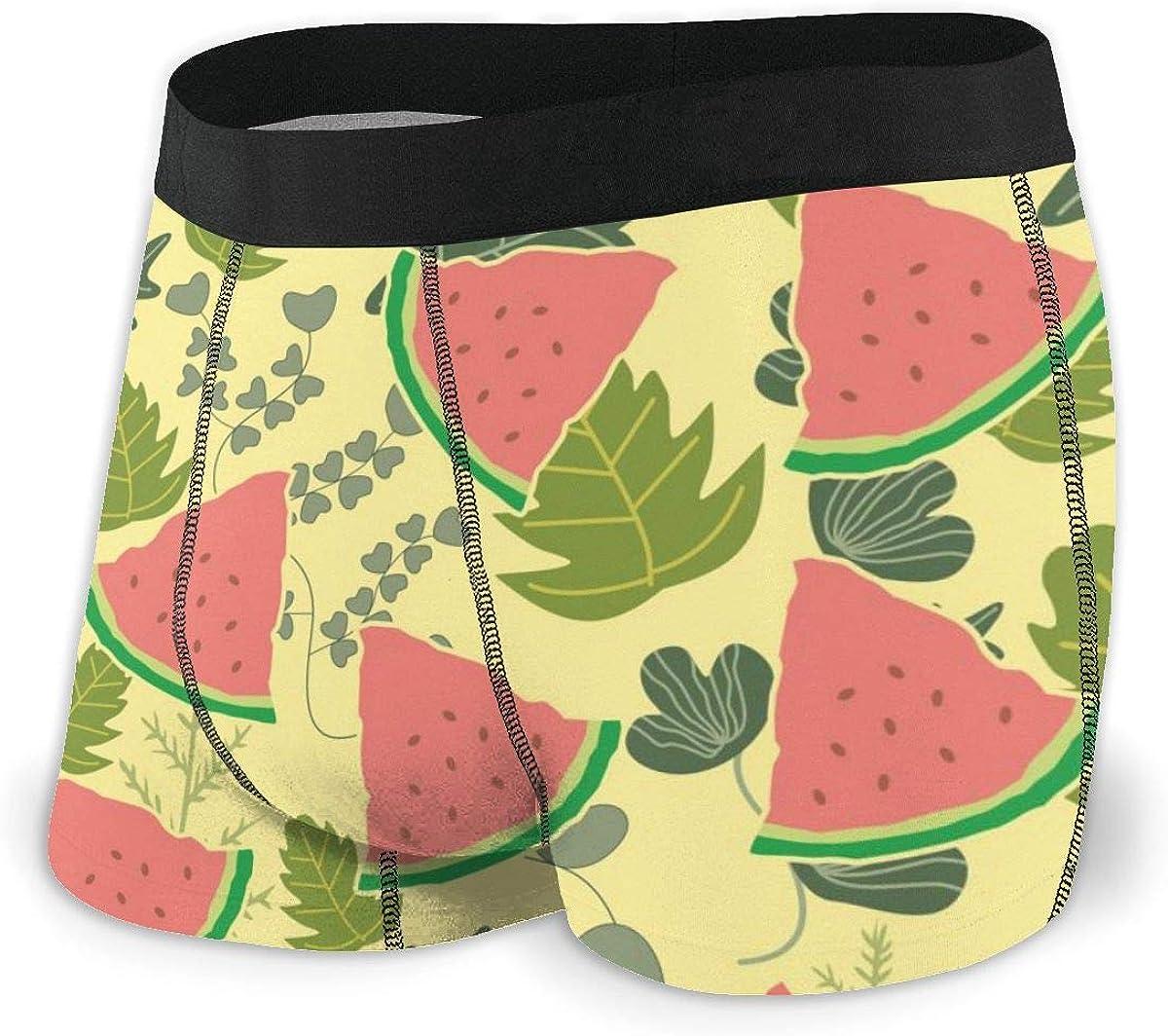 Randolph Wordsworth Mens Boxer Briefs Cute Watermelon Bikini Underwear Stretch Low Rise Trunks Boys