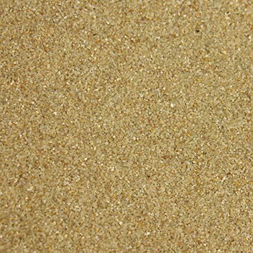 trendmarkt24 Farbsand Creme 1000g   1kg entspricht ca. 550 cm³   Deko Sand beige für Bastelideen   Tischdeko   Tischdekoration zum Befüllen von Glasgefäßen Vasen Teelichthalter 9102102
