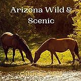 Arizona Wild & Scenic Calendar 2021