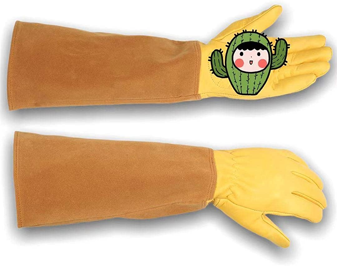 Rose Pruning thorn Sale SALE% OFF Purchase proof cactus Gardening work duty leathe heavy