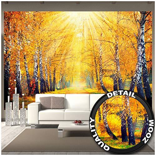 Great Art gouden herfst – muurschildering decoratie berken bos natuur landschap boom Allee weg autumn zon seizoenen park bos fotobehang wandbehang fotoposter wanddecoratie