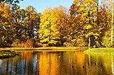 Wdsjxd Pintura por números Home Painting Set Calm Lake and Maple Forest Canvas Pintura al óleo Set Principiante con Pincel Home Dector Regalo Sin Marco 40X50cm