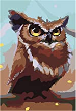 Hwhz Frameless Animal Owl Schnauzer Painting Kids Gift Digital Oil Painting Home Decor Wall Art for Living Room Drawing by Numbers C