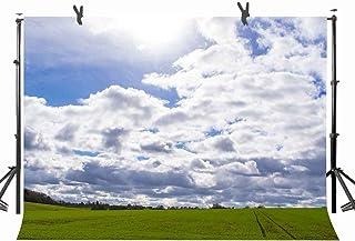 ネイビーブルーとホワイトの背景幕 ナチュラルグリーンの草の眺め 写真撮影用背景 パーソナルウェディングパーティー 写真ブーススクリーン背景 YouTube背景用小道具 ST170119 ST 10 X 7フィート (幅300cm x 2)