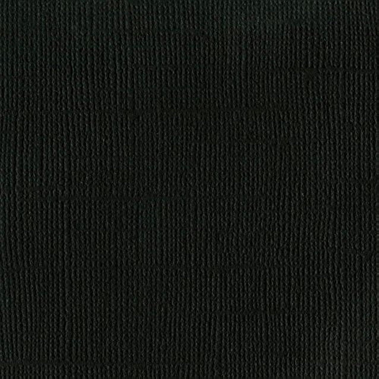 American Crafts Bazzill Basics Mono Adhesive Cardstock 12 X 12 Inch Raven