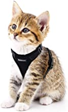 Cat Harness Small Dog Harness Escape Proof Cat Vest Harnesses, Adjustable Soft Mesh Kitty Harness for All Weather Walking,...
