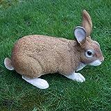 Dekofigur Hase Kaninchen Tierfigur Gartenfigur Wildkaninchen Zwerghase - 6