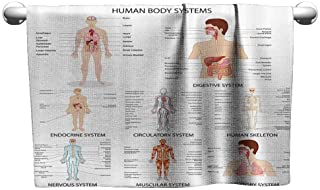 Mannwarehouse Human Anatomy Water-Absorbing Bath Towel Complete Chart of Different Organ Body Structures Cell Life Medical Illustration W27 x L55 Multi