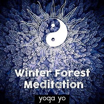 Winter Forest Meditation