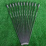 Sososhoot 28' Carbon Arrows 2.95' Feather Spine 500 Hunting Arrows for Compound Bow Recurve Bow (6Pcs)