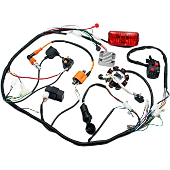 Amazon.com: Complete Electrics 4 Stroke ATV QUAD 150 200 250 300CC Wiring  Harness CDI 8 Coil Stator Tail Light Zongshen Lifan: AutomotiveAmazon.com