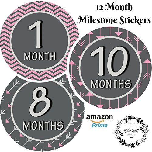 """Monthly Milestone Stickers 