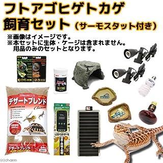 charm(チャーム) フトアゴヒゲトカゲ飼育セット サーモスタット付き(60~90cmケージ対応)
