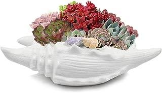 Dahlia White Seashell Ceramic Succulent Planter/Plant Pot/Flower Pot/Bonsai Pot