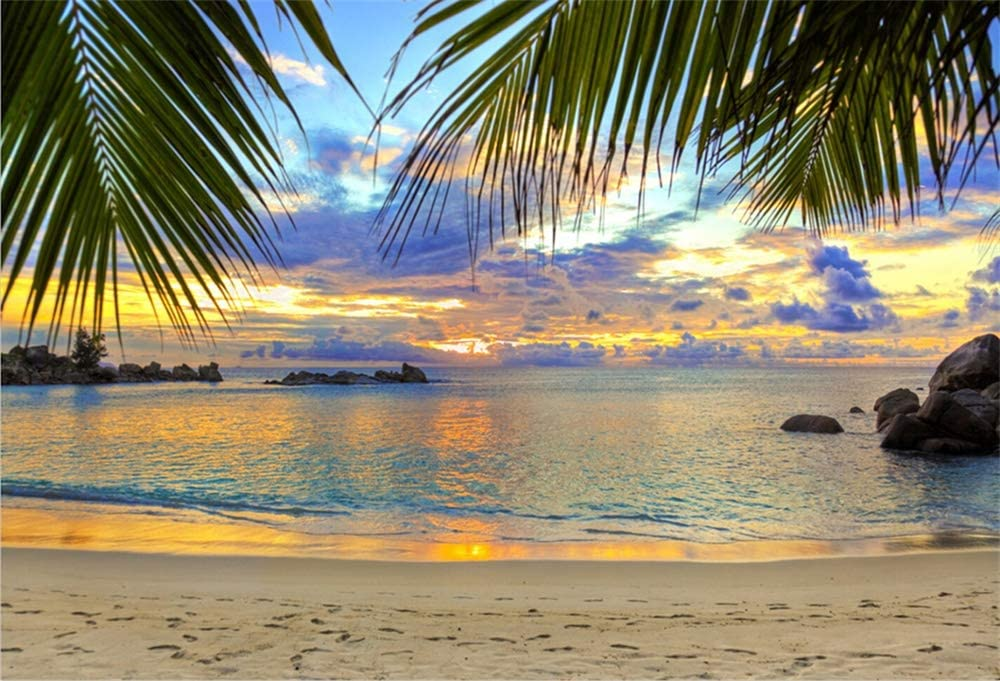 YEELE 10x10ft Tropical Sea Backdrop Blue Ocean Water and Sun Light Photography Background Natural Beach Landscape Outdoor Summer Resort Hawaiian Wedding Birthday Photobooth Props Wallpaper