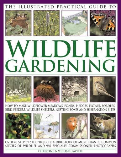 Lavelle, C: Illustrated Practical Guide to Wildlife Gardenin: How to Make Wildflower Meadows, Ponds, Hedges, Flower Borders, Bird Feeders, Wildlife Shelters, Nesting Boxes and Hibernation Sites