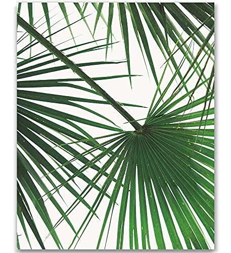 Tropical Leaf Print Palm Tree Print Palm Leaf Print Palm Tree Art Wall Art Green Wall Decor Tropical Art Palm tree Plant Wall Art Green Plant Green Leaves Art Leaves Poster 8x10 Inch