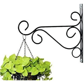 NAYAB Iron L Ring Bracket Wall Hanging Planter Hook Without Pot
