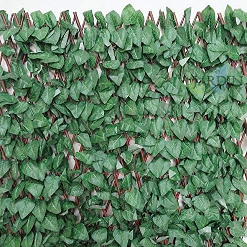 Suinga CELOSIA JARDIN de mimbre con hojas de ARCE, 1 x 2 metros