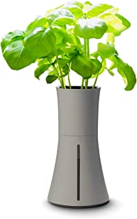 BOTANIUM(ボタニアム) 水耕栽培キット アッシュグレー