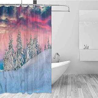 GloriaJohnson Winter Hotel Fabric Shower Curtain Idyllic Scene Mountains Suitable for Bathroom W55 x L72 Inch