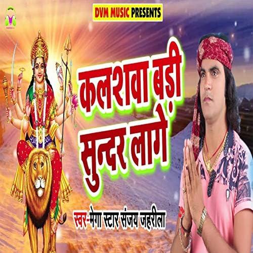Mega Star Sanjay Zahrila
