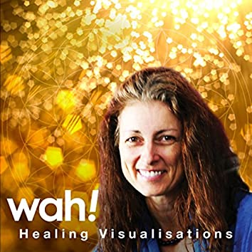 Healing Visualisations