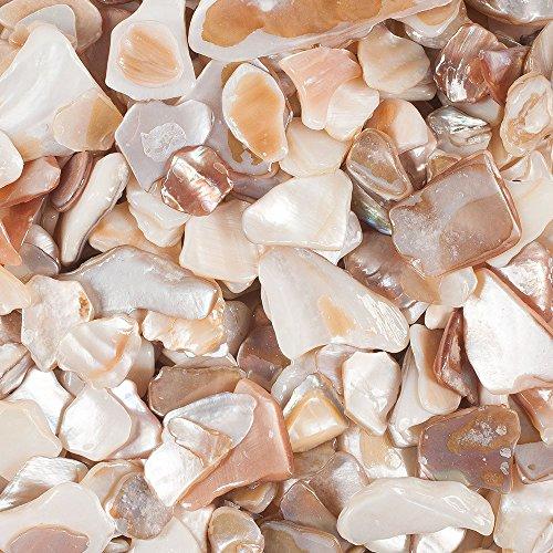 Perlmutt Stücke ca 10-20 mm 330 ml. Perlmutter, Muschel, Muscheln. Natur -99