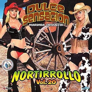 Nortirrollo, Vol. 20. Música de Guatemala para los Latinos