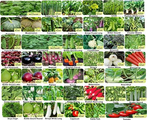 Aero Seeds 45 Variety (2580+ seeds) Of Vegetable Seeds