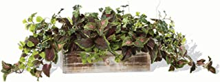 Petals Silkflowers Coleus & Maidenhair Fern Silk Foliage Planter