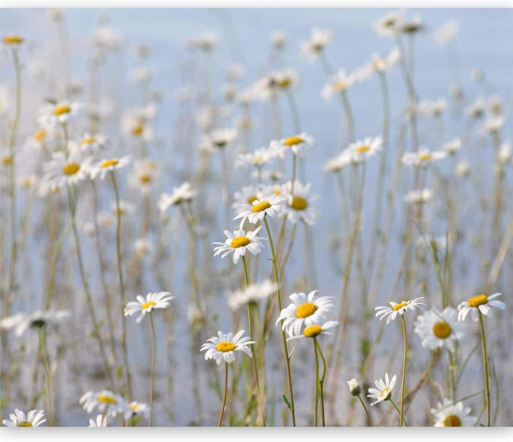 Mural Wall Photo sold out 3D Natural New mail order Flower-350x250CM Landscape