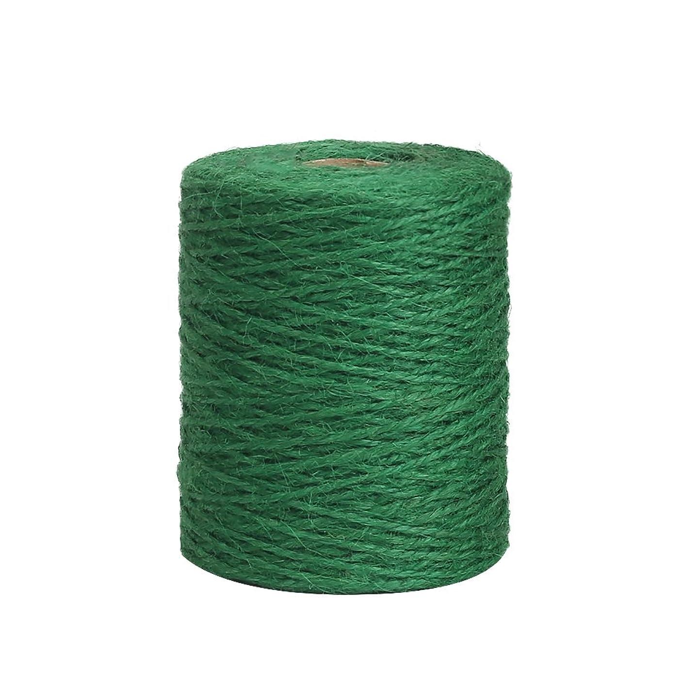 Vivifying 656 Feet Green Garden Twine, Natural 2mm Jute Twine for Floristry, Bundling, Crafts (Dark Green)