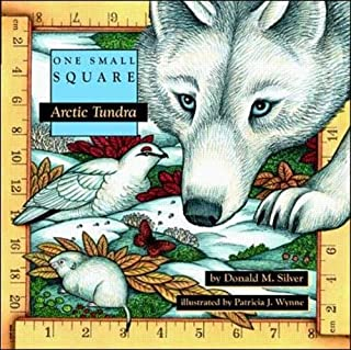 arctic air instructions