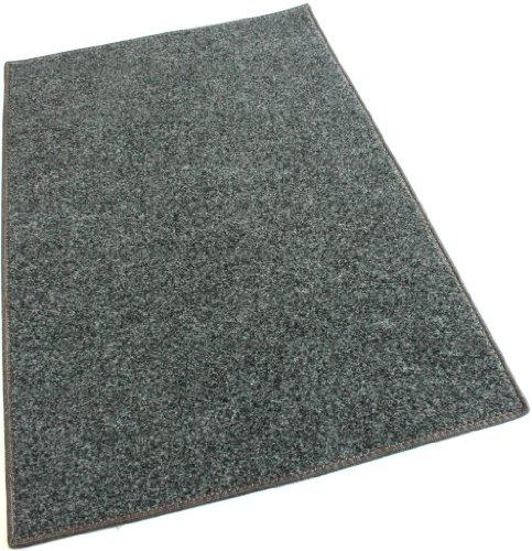 Koeckritz Rugs Smoke Carpet Area Rug – 12