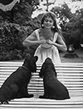 Brigitte Bardot with dogs in a garden Photo Print (24 x 30)
