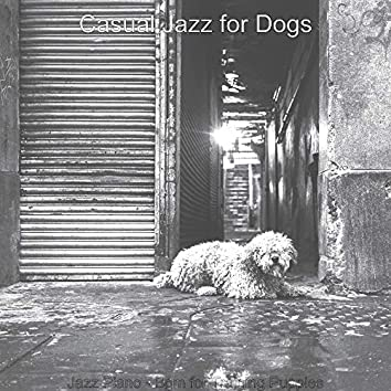 Jazz Piano - Bgm for Training Puppies